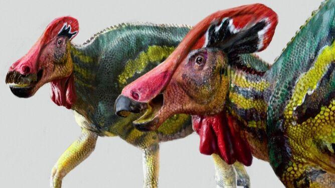 Naukowcy odkryli nowy gatunek dinozaura