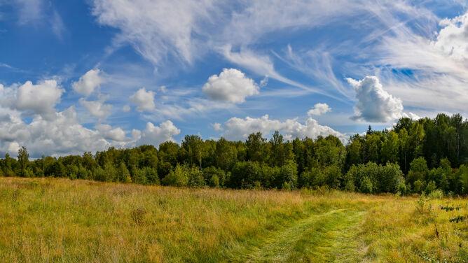 Prognoza pogody na dziś: bardzo ciepło <br />i deszczowo