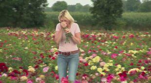 Tam, gdzie królują róże (odc. 537)